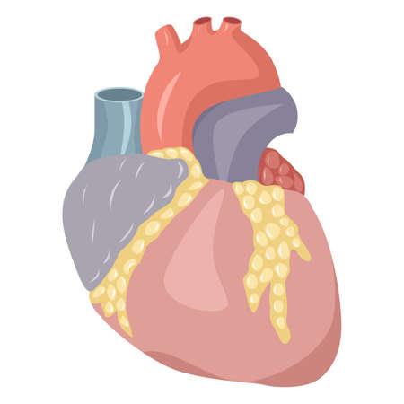 La ilustración dedicada al corazón humano. Foto de archivo - 44319491