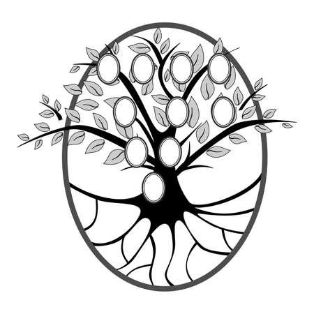 arbol geneal�gico: ilustraci�n de un �rbol con espacio para retratos de familia.