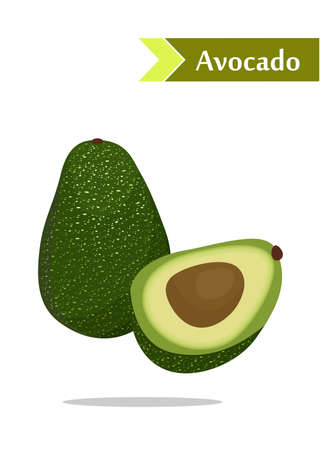 juicy: illustration with juicy and tasty fruits -  avocado. Illustration