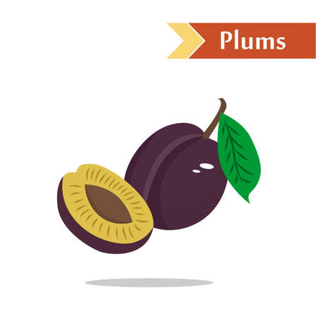tasty: illustration with juicy and tasty fruits - plums. Illustration