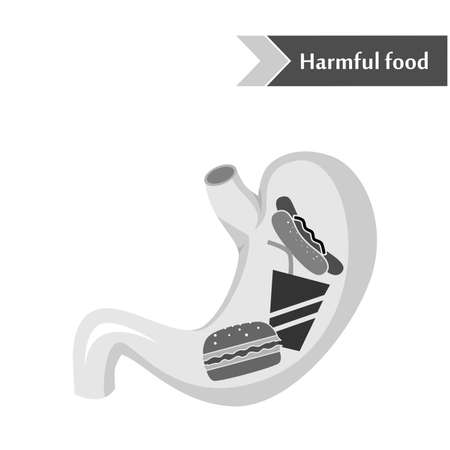 harmful: illustration dedicated to harmful food in the stomach. Illustration