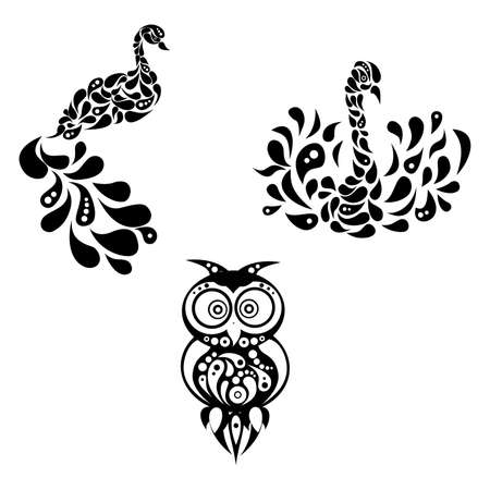 fidelity: illustration with beautiful peacock and swan and owl.