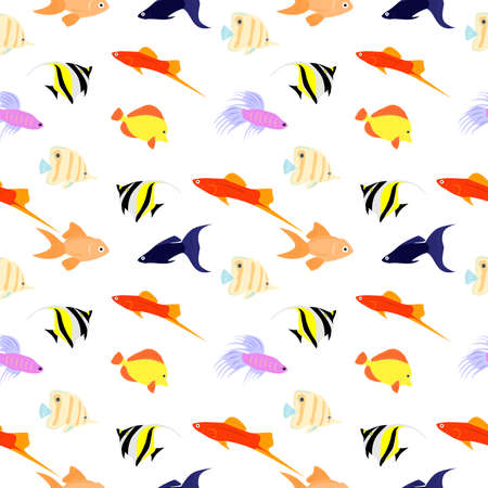 guppies: the background with animals - a variety of decorative aquarium fishes.