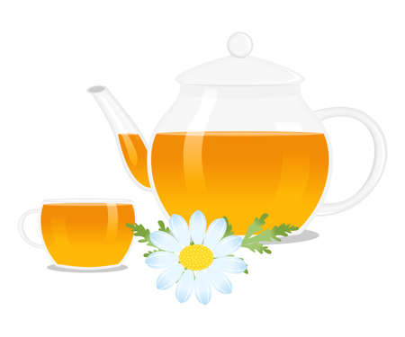 still life food: illustration of a teapot and a cup with herbal and hot tea.
