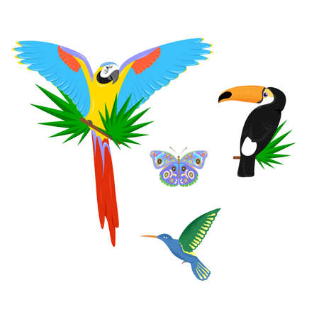 tropics: beautiful and bright set of animals on the theme of tropics. Illustration
