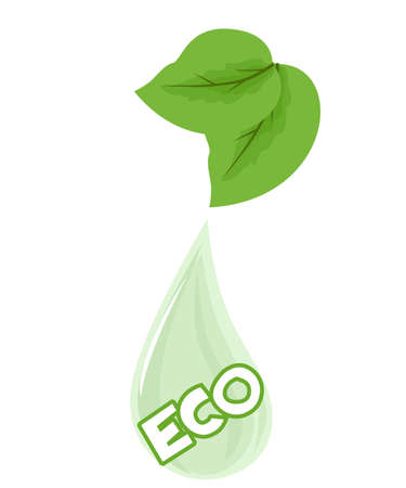 dew: Illustration with green leaves and dew drops on the theme of eco.