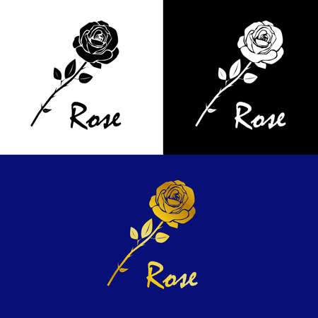 Beautiful  on the theme of nature with a beautiful rose flower. Ilustração