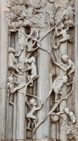 representation collec grapes detail the cathedral of messina
