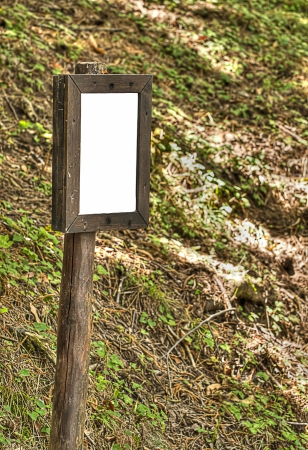 Clean information board in the forest