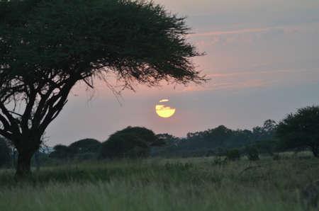 lanscape: Africa sunset lanscape Stock Photo