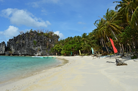 nido: Beautiful island, Blue bay and palm trees in El Nido, Palawan, Philippines