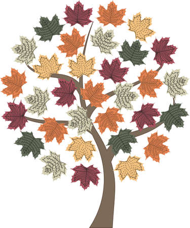 single autumn tree isolated orange and yellow maple leafs in circle