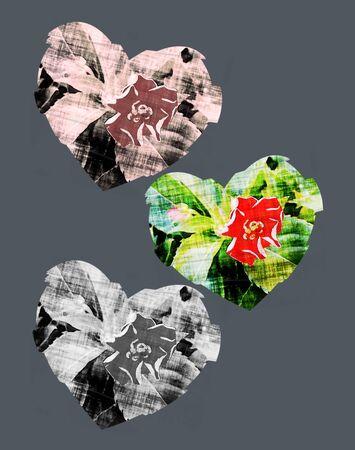 Collage - Flower