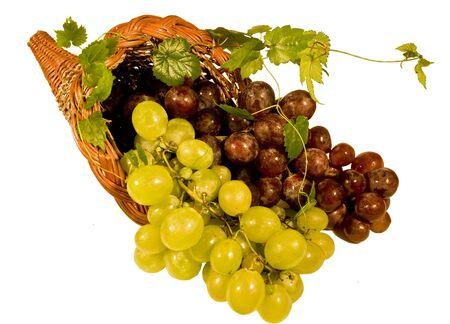 foglie: Cornucopia con grappoli di uva nera e bianca