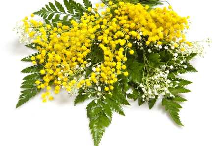 flowers for the celebration of Women's and Mother's Day Standard-Bild