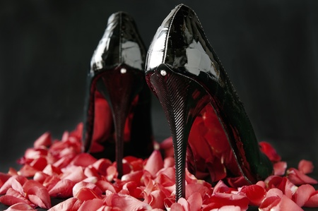 leather shoes: elegant Italian shoes for women on white background