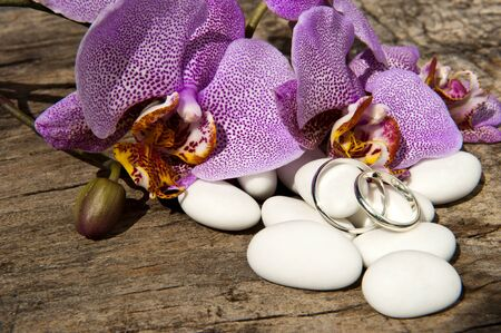 candy ,wedding rings and orchid pink on wooden table photo