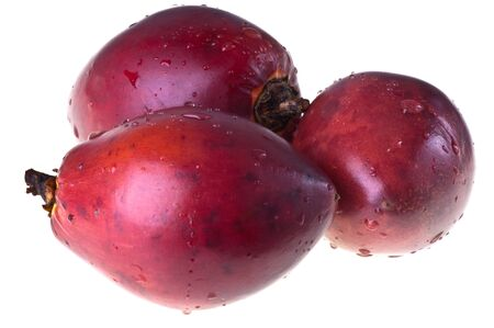 tamarillo: Tamarillo, or tomate de árbol on a white background
