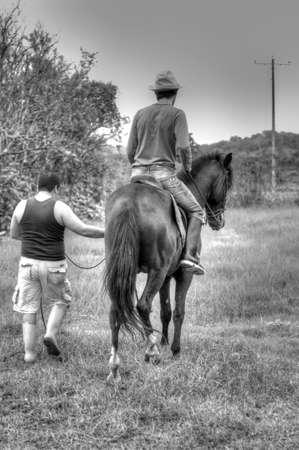 Horses and riders on a farm in Ecuador photo