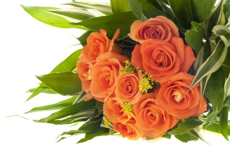 Bouquet of orange roses on a white background