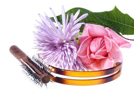 flores exoticas: diadema de aire, cepillo y flores ex�ticas en el fondo blanco
