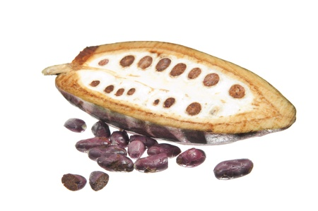 cocoa beans: fruit of the cocoa tree on white background