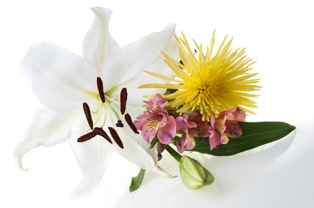 bouquet of flowers for Women photo