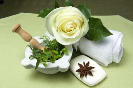 products for body care on a green background