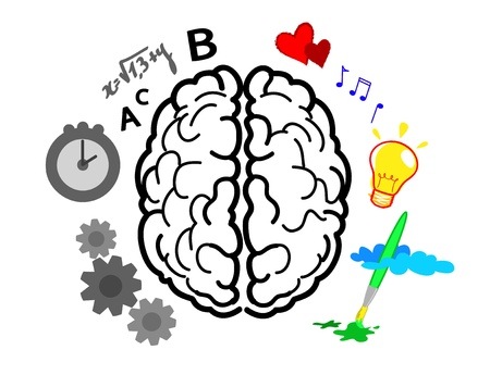 right ideas: Brain emispheres. Left is logic,maths and time. Right is creativity, art and feelings