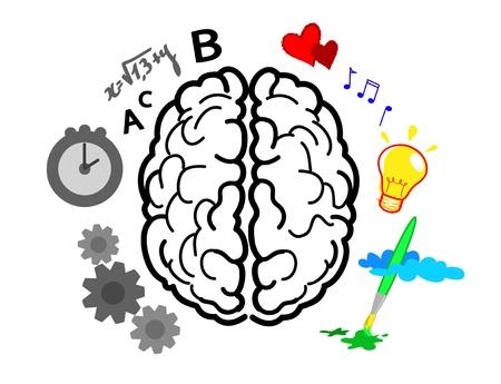 Emispheres del cervello. Left è logica, matematica e tempo. È creatività, arte e sentimenti