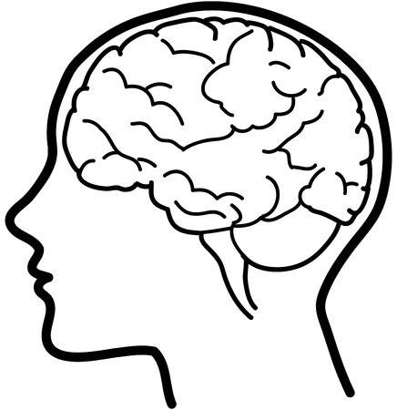 Como Colorear El Cerebro Imagui