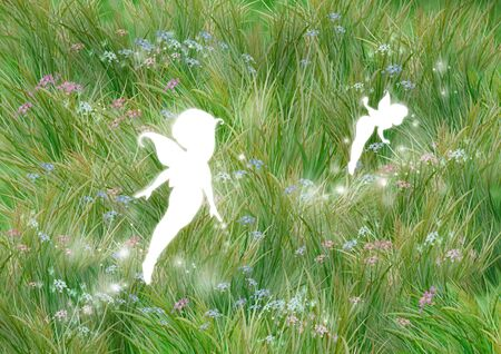 meadowland: Fairies in meadow with grass and tiny flowers. Digital illustration