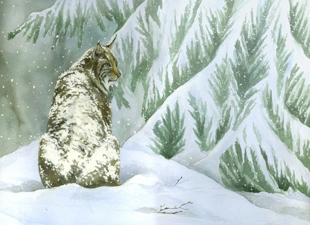 lynx: Bobcat in a snowing landscape- Artwork made with watercolour Stock Photo