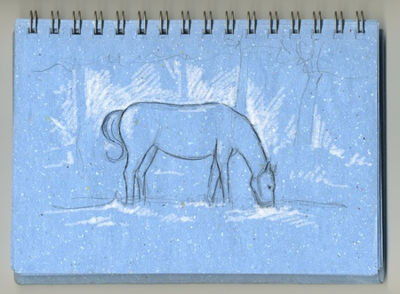 Horse eating grass hand drawn with grey pencil and white chalk on a blue sketchbook photo