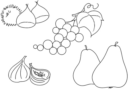 Coloring illustrations of fruits  Grape, figs, chestnuts with husk, and pears