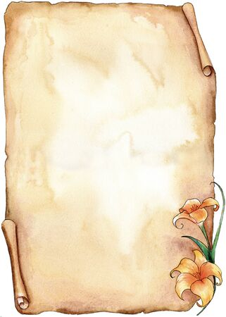Sepia old parchment with a lilium hand made with watercolors photo