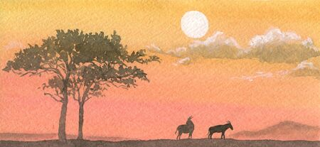 watercolour painting: Landscape with animals in Africa at the sunset  Watercolor