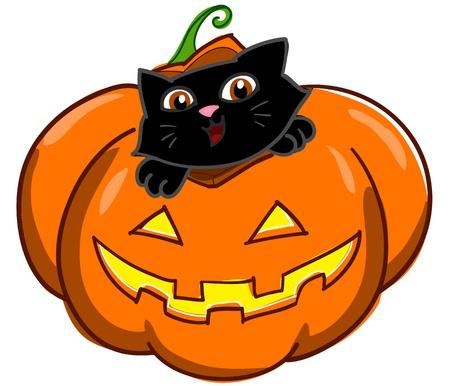 black jack: halloween pumpkin with cute cartoon black cat  Digital illustration