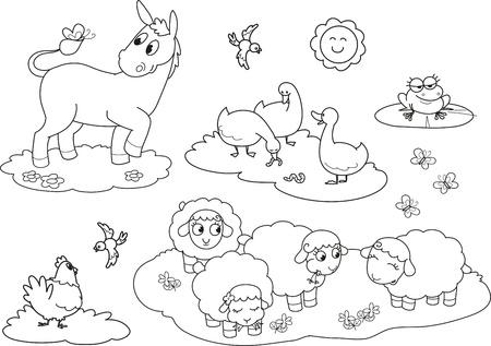 Conjunto de animales de granja para colorear para los ni�os en burro ovejas gallina gallina y la rana Foto de archivo - 15173867