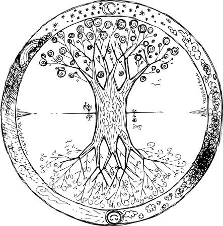 albero della vita: Yggdrasil celtic albero della vita mandala Vettoriali