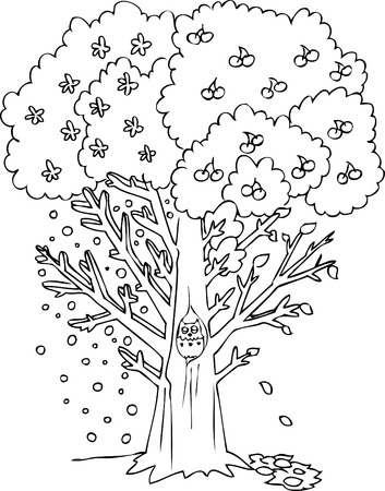 autumn colouring: Four seasons tree