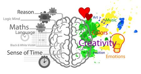 right ideas: Hemisferios izquierdo y derecho del cerebro