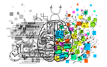 hemisferios cerebrales. La derecha es emociones, intuiciones, creatividad. La izquierda es la lógica, la razón, verbal. Ilustración de vector