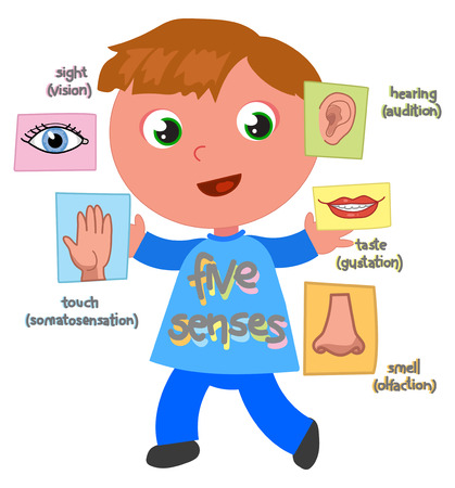 Boy showing 5 senses: sight, hearing,touch,taste,smell, vector illustration