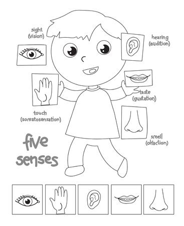 Niño que muestra 5 sentidos: vista, oído, tacto, gusto, olfato, ilustración vectorial en blanco y negro Foto de archivo - 94672122