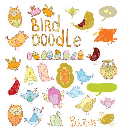pigeon owl: Bird doodle set.  Illustration