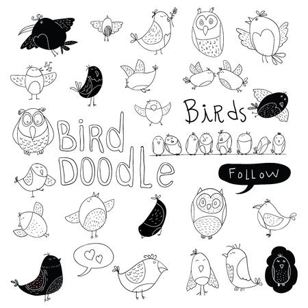 El Doodle fijó Bird. ilustración vectorial.