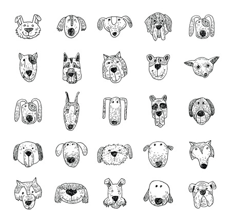 beware of the dog: dog icon -  illustration. Illustration