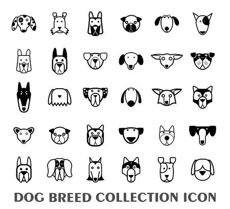 pastor: conjunto de iconos de la raza del perro - ilustración vectorial.