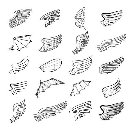 wings set, vector illustrations.